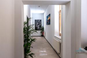 Ubytovna U Kašny, Hostely  Uherské Hradiště - big - 19