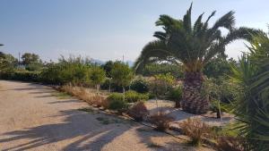 Villa Ersilia Aegina Greece