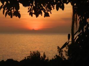Ocean View Sai