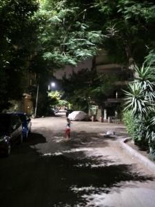 Old Hadayea Ahram Apartment