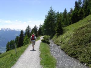 Chalet des Alpes - Accommodation - Crans-Montana