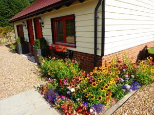 Handywater Cottage B&B, Pensionen  Henley-on-Thames - big - 37