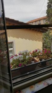 Mavi's bedrooms - AbcAlberghi.com