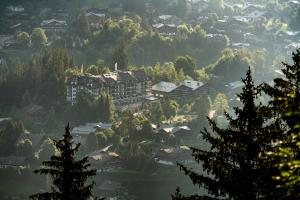 Park Gstaad (2 of 77)