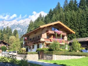 Appartement Schwaiger - Apartment - Scheffau am Wilden Kaiser