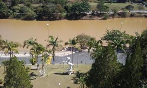 obrázek - Flat Cavalinho Branco (2D0)