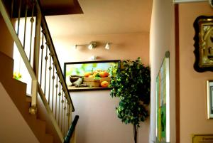 Abrikos Guest House, Affittacamere  Rostov on Don - big - 70