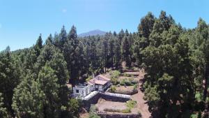 obrázek - Tenerife Cottage Discover Nature