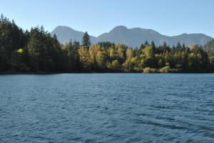 obrázek - Lake of the Woods Resort