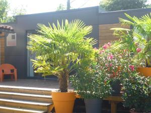 Location gîte, chambres d'hotes Camping Cap Ocean dans le département Gironde 33
