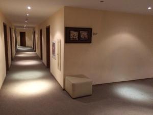 Villa Park Studios Borovets, Apartmánové hotely  Borovec - big - 8