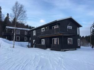 Ålen Skisenter - Apartment - Ålen