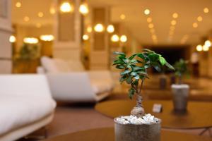 The Grand Gloria Hotel, Hotely  Batumi - big - 43