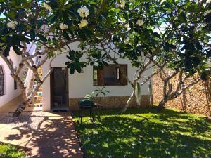 Mwanana House, Dovolenkové domy  Watamu - big - 3