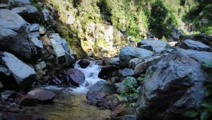 Talamanca Reserve, Отели  Rivas - big - 106
