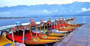 Kashmir View Houseboat, Отели  Сринагар - big - 34