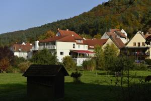 Landhotel Zur Wegelnburg, Hotely  Schönau - big - 4