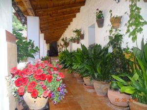 obrázek - Hotel La Hortizuela