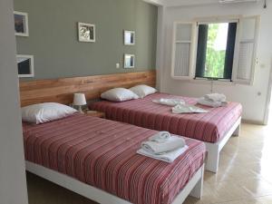 Green House, Penziony  Himare - big - 55
