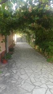 a casa di Gina - AbcAlberghi.com