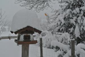 Jausenstation Vogelhütte - Accommodation - Innsbruck