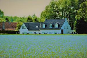 B&B Maison Kerkhove - Zulte