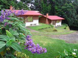 Rancho Amalia Naranjo