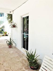 Casa Azul, Hotel  Isola Holbox - big - 31