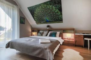 Villa Aviator - Apartment - Jaworze