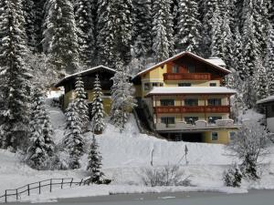 Seechalet Zauchensee - Hotel