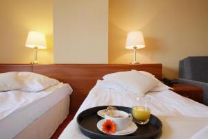 Dwór Bogucin Hotel&Restauracja