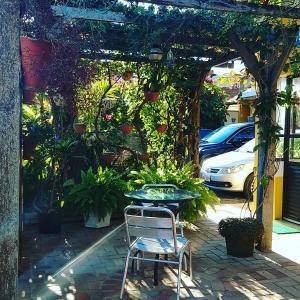 Pousada Jardim Porto Belo, Guest houses  Porto Belo - big - 253