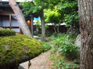 obrázek - Kusa no Niwa