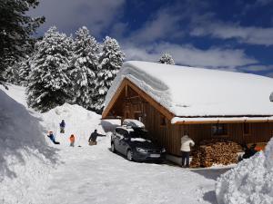 obrázek - Wildererhütte Chalet Helmut