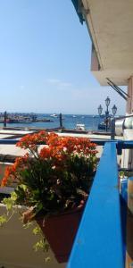 Marinautica Sea Cottage - AbcAlberghi.com