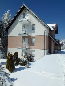 Apartman Krstic - Apartment - Divcibare