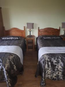 GoldenDawn Guest House, Affittacamere  Citywest - big - 20