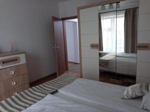 Ambiance Apartment - Swiss Village, Apartmány  Sibiu - big - 17