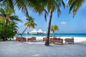Diamonds Thudufushi Beach & Water Villas (22 of 100)