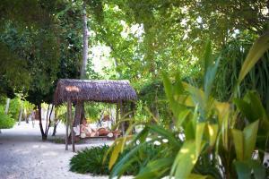 Diamonds Thudufushi Beach & Water Villas (21 of 100)