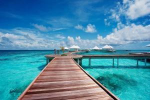 Diamonds Thudufushi Beach & Water Villas (6 of 100)