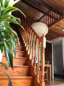 B&B Ambiorix Birch House.  Photo 10