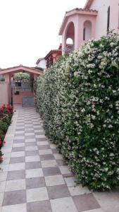 obrázek - Casa con giardino