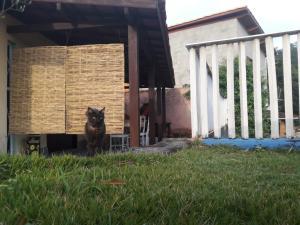 Vila Canto na ilha, Case vacanze  Ilhabela - big - 31