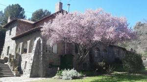 Ostelli e Alberghi - Posada San Andres