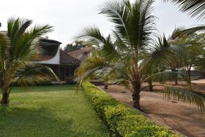 Hotel Club du Lac Tanganyika, Отели  Бужумбура - big - 27