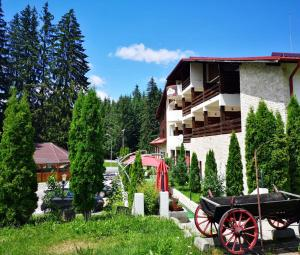 Hotel Poiana Ursului - Poiana Brasov