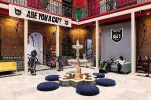 Cat's Hostel (33 of 46)