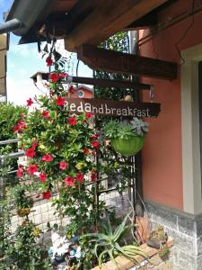 Caicai Bed And Breakfast - Castellar