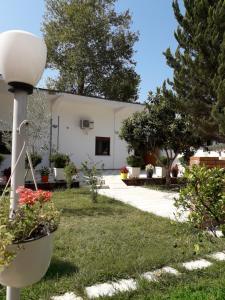 Guesthouse Villa Juri - Sheaj